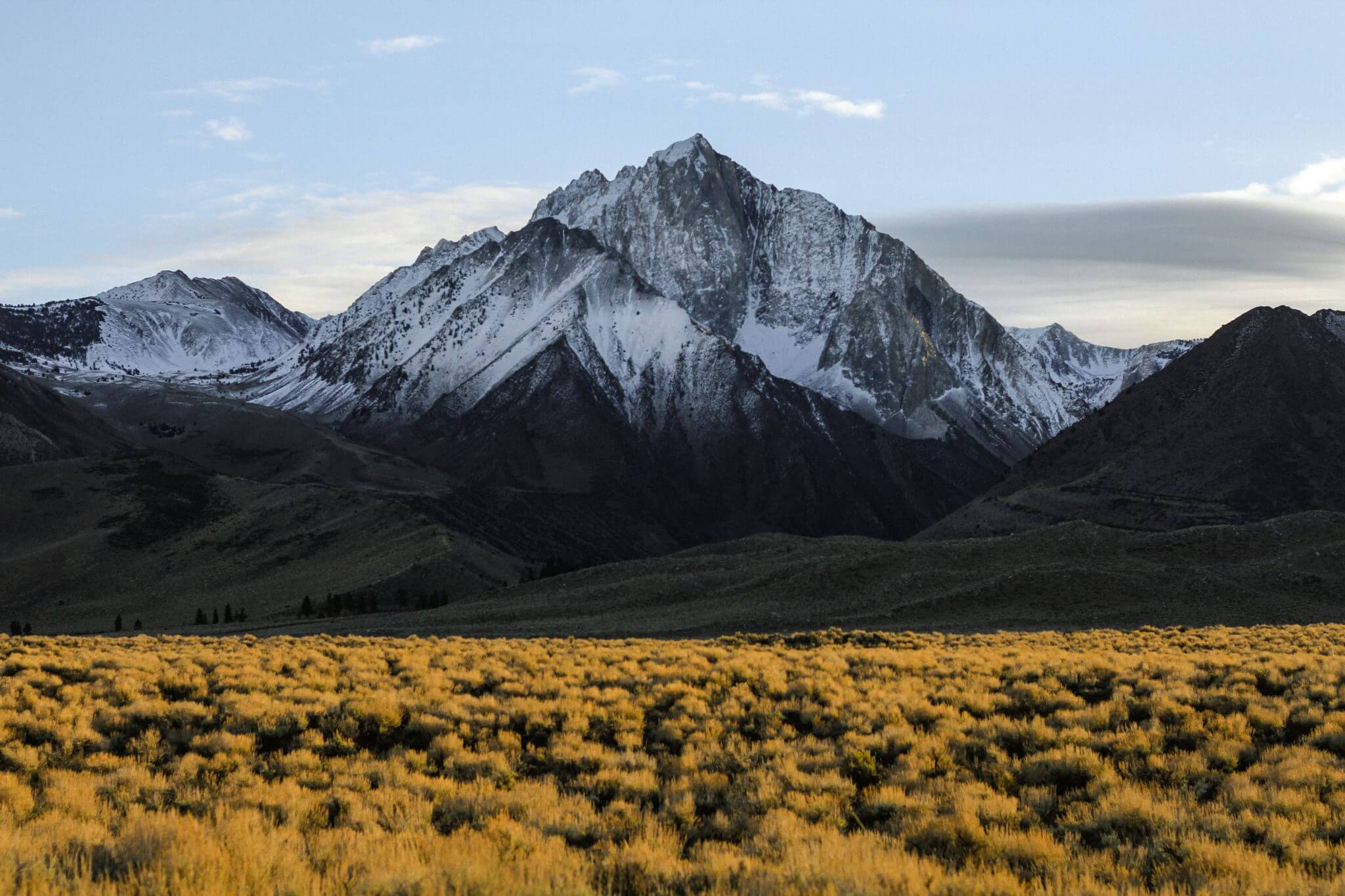How to Conquer the Project Reporting Mountain