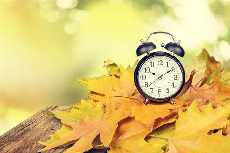 Does Daylight Saving Time Affect Productivity?